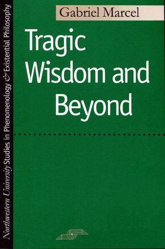Tragic Wisdom and beyond - Studies in Phenomenology and Existential Philosophy (Paperback)