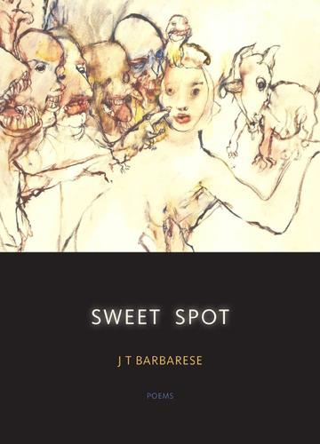 Sweet Spot: Poems (Paperback)