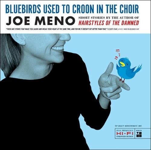 Bluebirds Used to Croon in the Choir: Stories (Hardback)