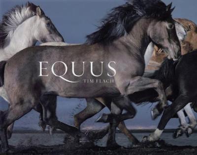 Equus (Hardback)