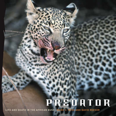 Predator: Life and Death in the African Bush (Hardback)