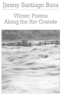 Winter Poems Along the Rio Grande (Paperback)