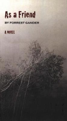 As a Friend: A Novel (Paperback)