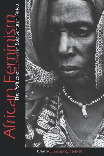 African Feminism: The Politics of Survival in Sub-Saharan Africa (Paperback)