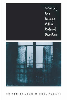 Writing the Image After Roland Barthes (Paperback)