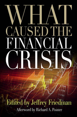 What Caused the Financial Crisis (Paperback)