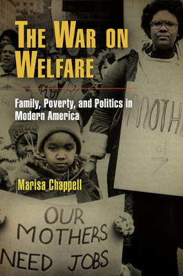 The War on Welfare: Family, Poverty, and Politics in Modern America - Politics and Culture in Modern America (Hardback)