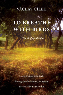 To Breathe with Birds: A Book of Landscapes - Penn Studies in Landscape Architecture (Hardback)