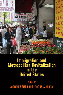 Immigration and Metropolitan Revitalization in the United States - The City in the Twenty-First Century (Hardback)