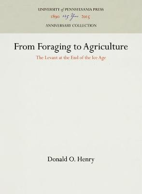 From Foraging to Agriculture: Levant at the End of the Ice Age (Hardback)