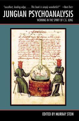 Jungian Psychoanalysis: Working in the Spirit of Carl Jung (Paperback)