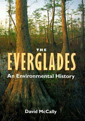 The Everglades: An Environmental History - The Florida History and Culture Series (Hardback)
