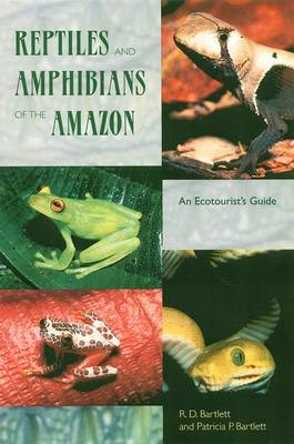 Reptiles and Amphibians of the Amazon: An Ecotourist's Guide (Paperback)