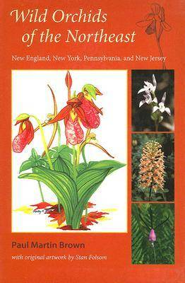 Wild Orchids of the Northeast (Paperback)