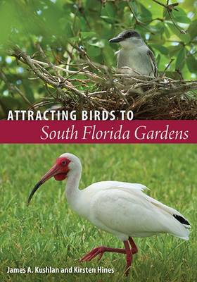Attracting Birds to South Florida Gardens (Paperback)