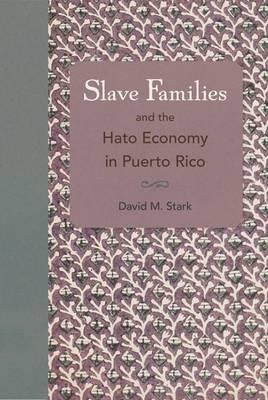 Slave Families and the Hato Economy in Puerto Rico (Hardback)
