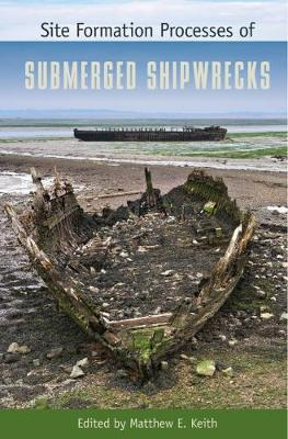 Site Formation Processes of Submerged Shipwrecks (Hardback)