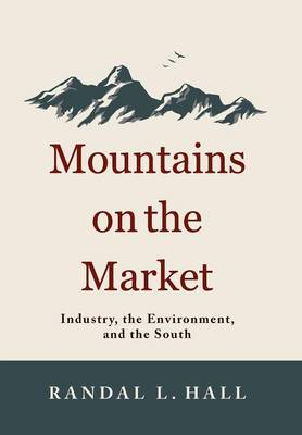 Mountains on the Market: Industry, the Environment and the South (Hardback)