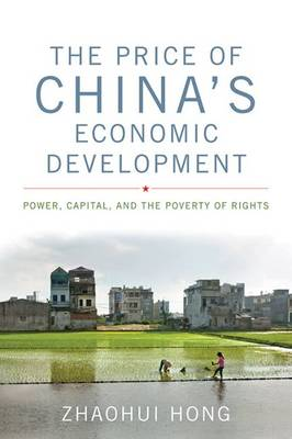 The Price of China's Economic Development: Power, Capital, and the Poverty of Rights - Asia in the New Millennium (Hardback)