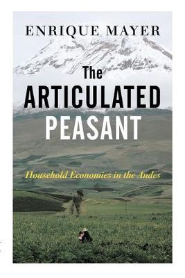 The Articulated Peasant: Household Economies In The Andes (Paperback)
