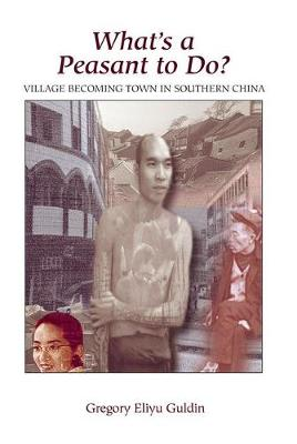 What's A Peasant To Do? Village Becoming Town In Southern China (Paperback)
