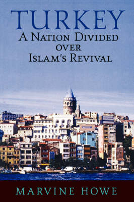 Turkey: A Nation Divided Over Islam's Revival (Paperback)