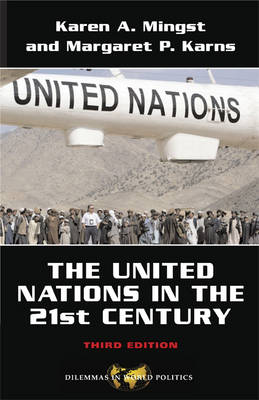 The United Nations in the Twenty-first Century (Paperback)