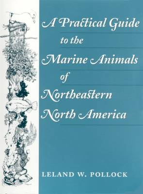 A Practical Guide to the Marine Animals of Northeastern North America (Paperback)