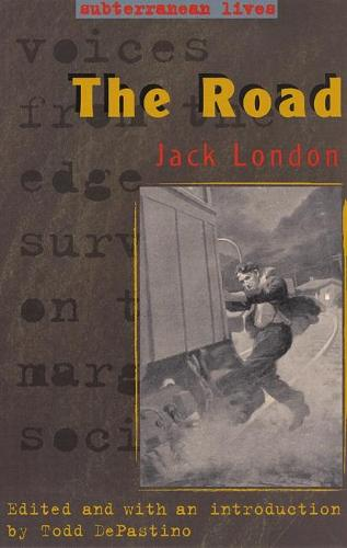 The Road - Subterranean Lives Series (Hardback)