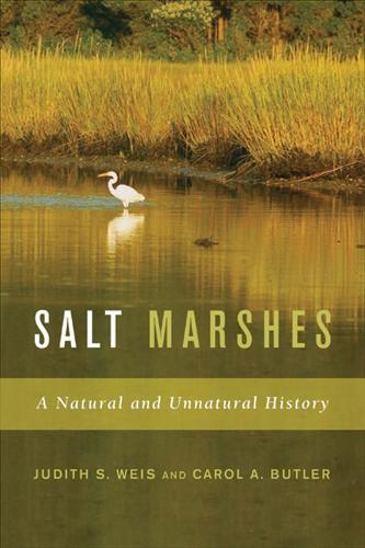 Salt Marshes: A Natural and Unnatural History (Paperback)