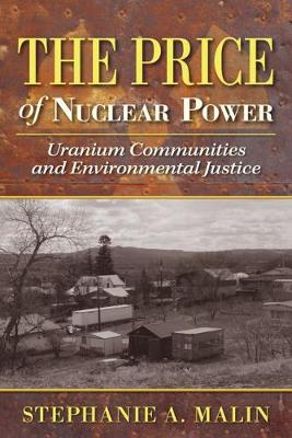 The Price of Nuclear Power: Uranium Communities and Environmental Justice - Nature, Society, and Culture (Hardback)