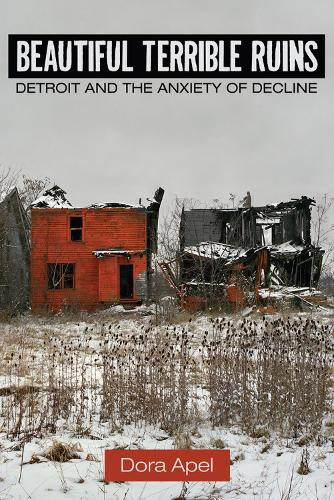 Beautiful Terrible Ruins: Detroit and the Anxiety of Decline (Paperback)