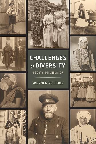 Challenges of Diversity: Essays on America (Hardback)
