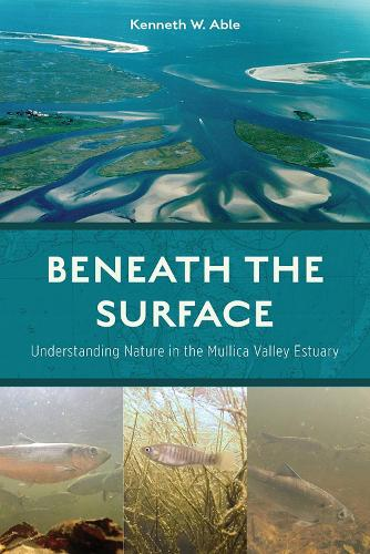 Beneath the Surface: Understanding Nature in the Mullica Valley Estuary (Paperback)