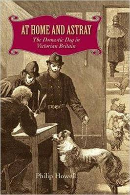 At Home and Astray: The Domestic Dog in Victorian Britain (Hardback)