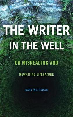 The Writer in the Well: On Misreading and Rewriting Literature - Theory Interpretation Narrativ (Hardback)