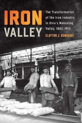 Iron Valley: The Transformation of the Iron Industry in Ohio's Mahoning Valley, 1802-1913 - Trillium Books (Hardback)