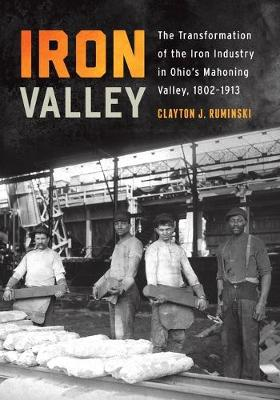 Iron Valley: The Transformation of the Iron Industry in Ohio's Mahoning Valley, 1802-1913 - Trillium Books (Paperback)