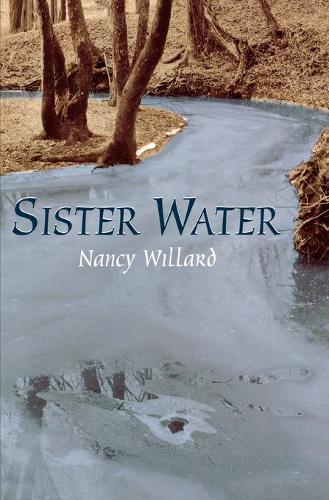 Sister Water: A Novel - Landscapes of Childhood (Paperback)
