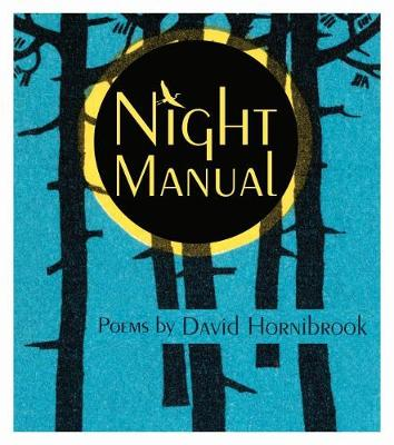 Night Manual - Made in Michigan Writers Series (Paperback)