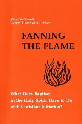 Fanning the Flame: What Does Baptism in the Holy Spirit Have to Do with Christian Initiation? (Paperback)