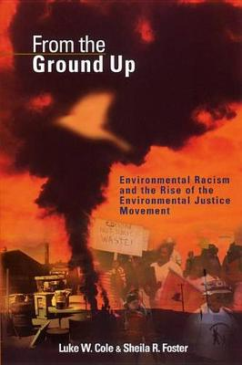 From the Ground Up: Environmental Racism and the Rise of the Environmental Justice Movement - Critical America (Hardback)