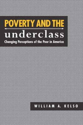Poverty and the Underclass: Changing Perceptions of the Poor in America (Hardback)