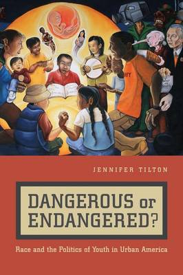 Dangerous or Endangered?: Race and the Politics of Youth in Urban America (Paperback)