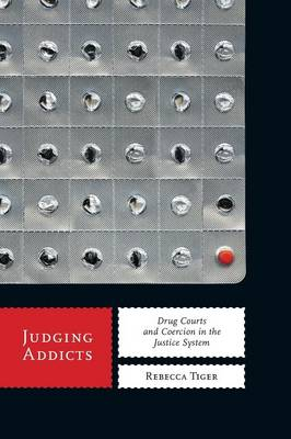 Judging Addicts: Drug Courts and Coercion in the Justice System - Alternative Criminology (Paperback)