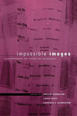 Impossible Images: Contemporary Art After the Holocaust - New Perspectives on Jewish Studies (Paperback)
