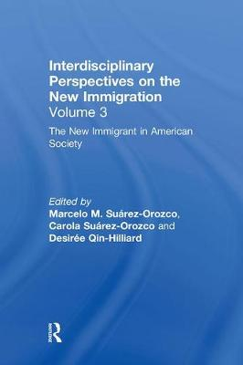 The New Immigrant in American Society: Interdisciplinary Perspectives on the New Immigration (Hardback)