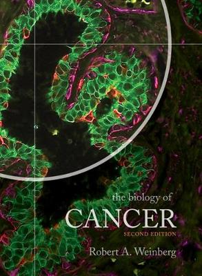 The Biology of Cancer (Paperback)
