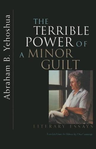 Terrible Power of a Minor Guilt: Literary Essays (Hardback)