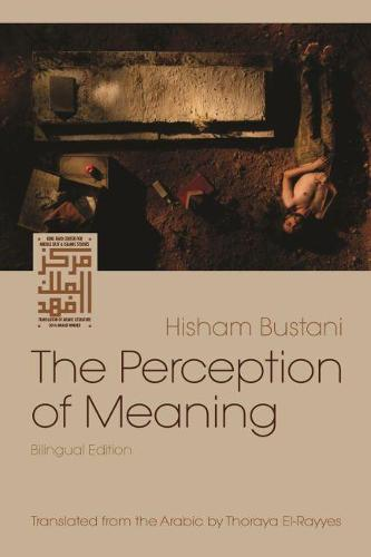 The Perception of Meaning - Middle East Literature in Translation (Paperback)